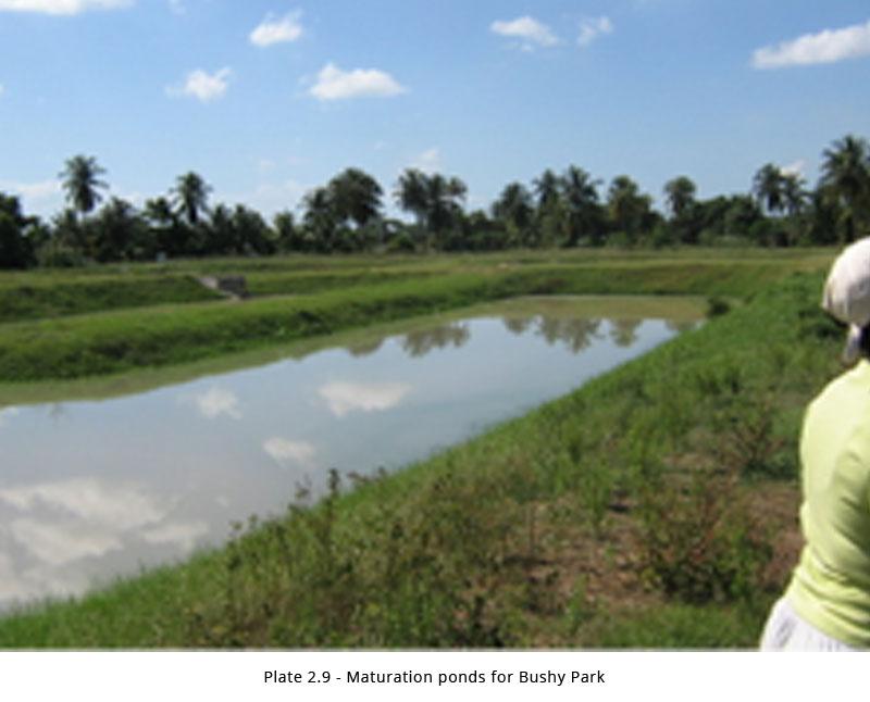 Bushy park housing development ceac solutions for Design of anaerobic pond